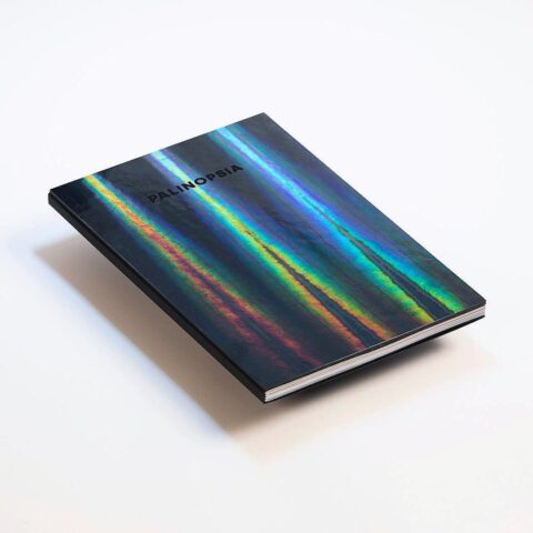 Impressão offset premium livro palinopsia 1